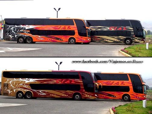 Manoseo en el bus - XVIDEOSCOM