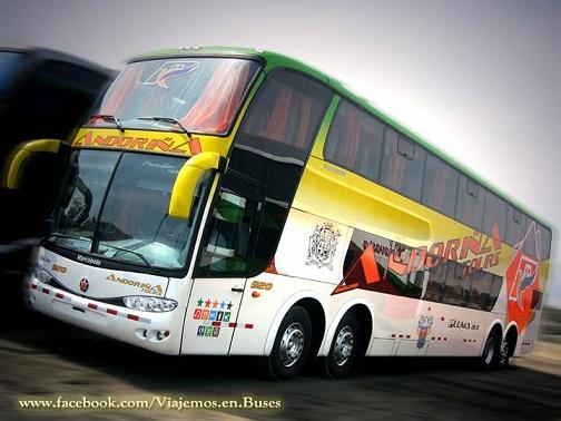 Nuevo bus de ANDORINA PLUMA