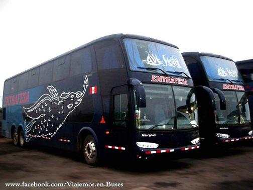 Nuevos buses Marcopolo de la empresa Emtrafesa