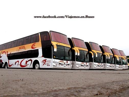 Nuevos buses del año de la empresa Movil Tours