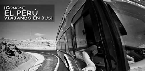 nosotros viaje en bus