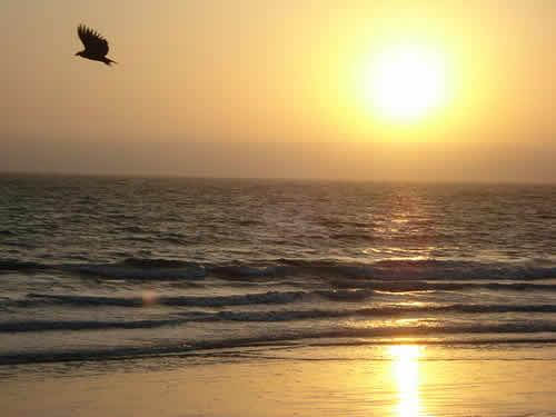 playa colan