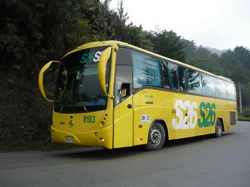 Expreso Palmira viaje en bus