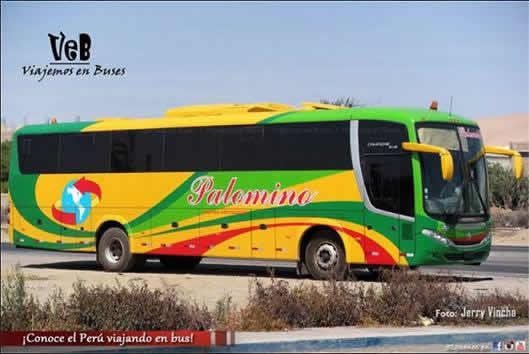 Empresa de Transportes Wari - Palomino