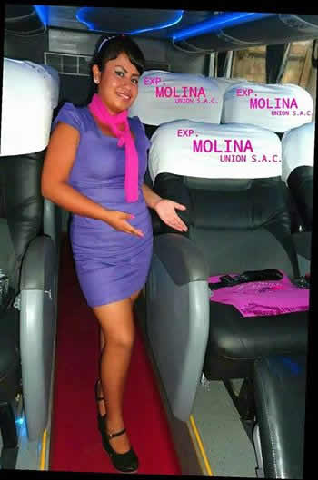 molina union bus vip