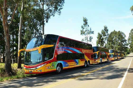 Cromotex buses